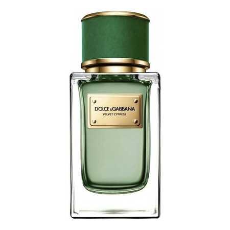 Dolce Gabbana (D&G) Velvet Cypress