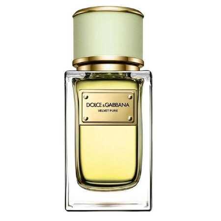 Dolce & Gabbana (D&G) Velvet Pure