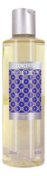 Fragonard Concerto