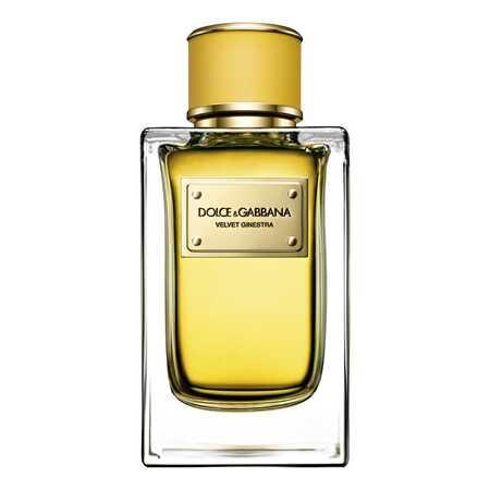 Dolce & Gabbana (D&G) Velvet Ginestra